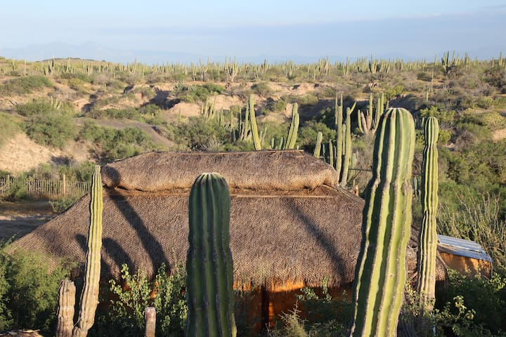 Cactimar offgrid eco-ranch bungalow, 2 min beach