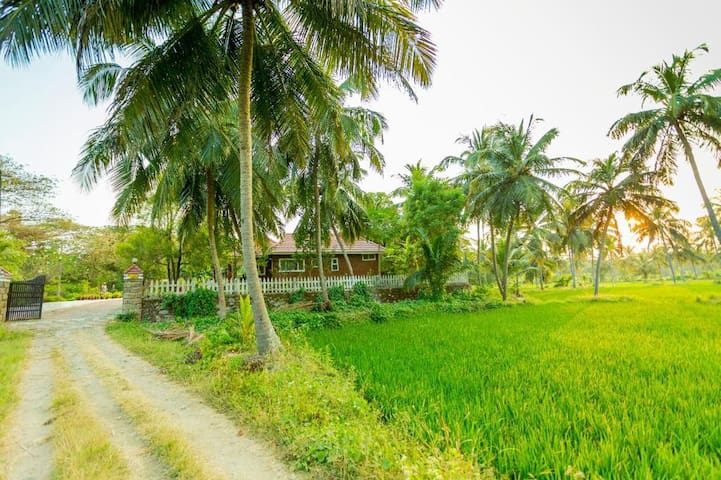 Vayaloram - an abode nestled in nature.