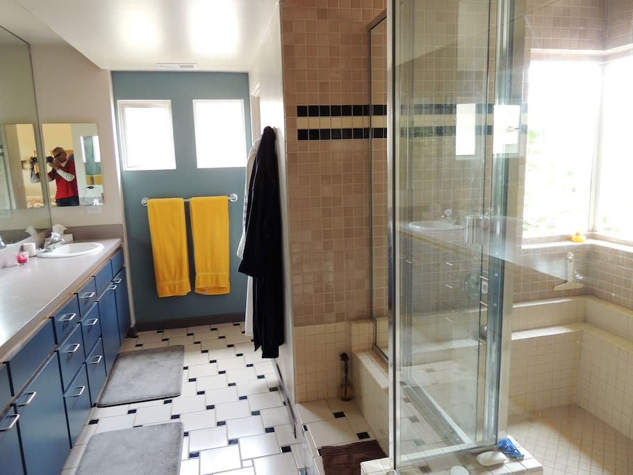Large His / Hers. His / His, Hers / Hers bathroom. Shower is seriously big enough for two.