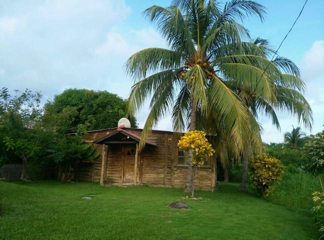Cabin in San Blas beach