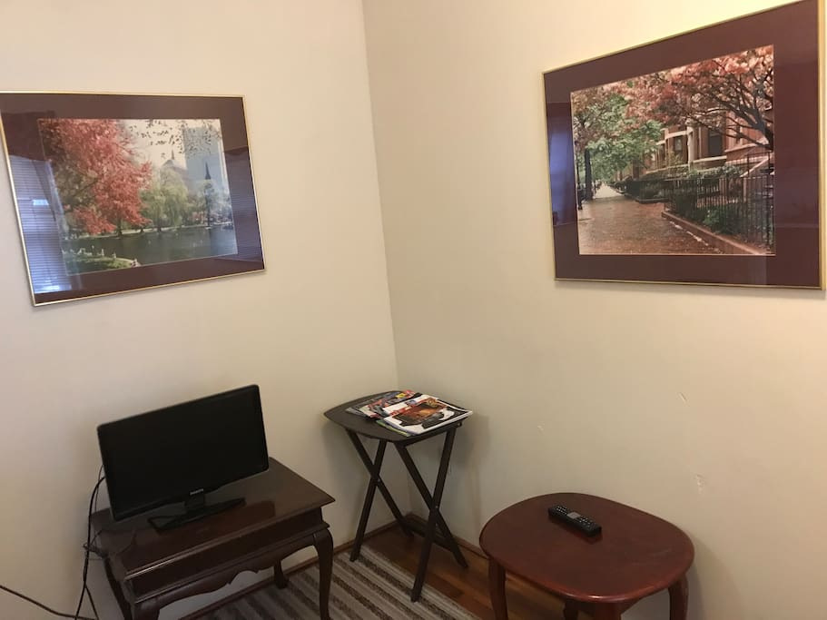 Living room area with small tv