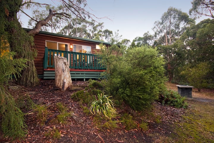 Hidden Valley Cabins: A Step Up from Lorne