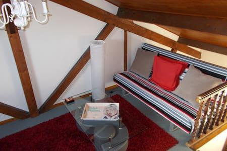 duplex atypique rez de jardin - Tours - Rumah