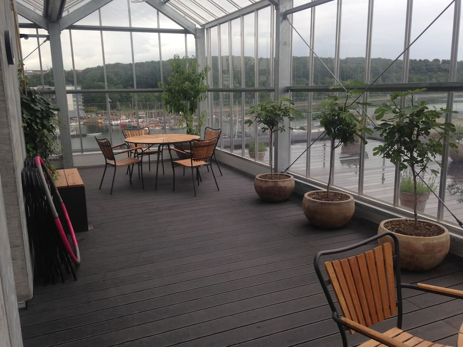 Drivhus på tagterrasse, green house on roof terrace