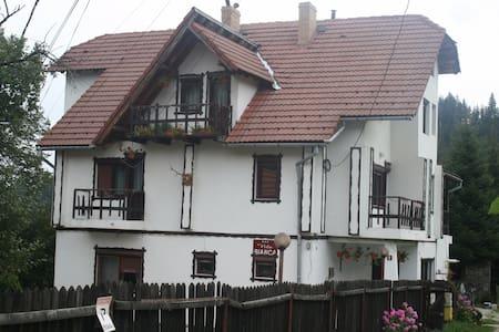 Bianca Guesthouse in Bran, Brasov