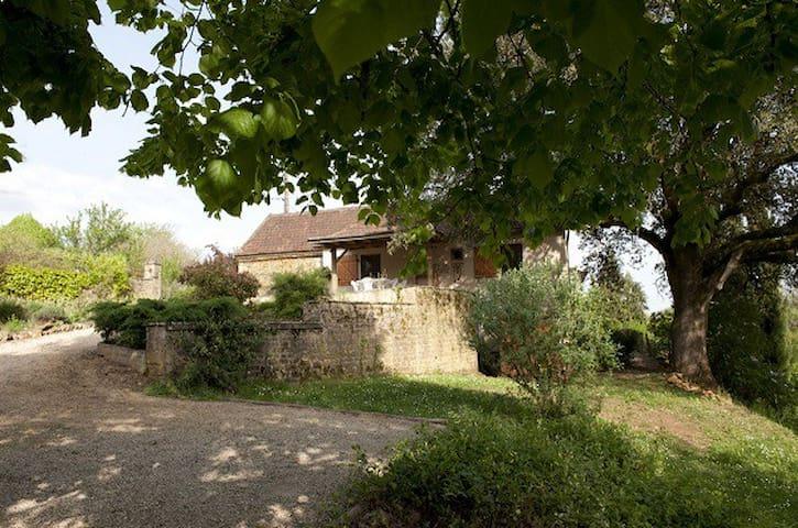 Le Chêne Centenaire - Calviac-en-Périgord - Dom