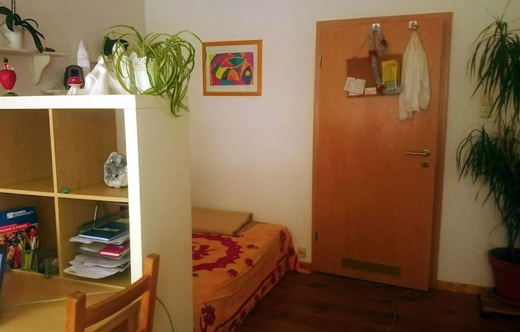 Nice Room in a Wg in the city - Bamberg - Apartamento