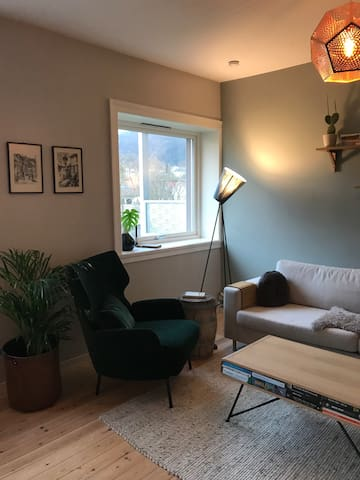 Cozy apartment close to city center and mt.Ulriken