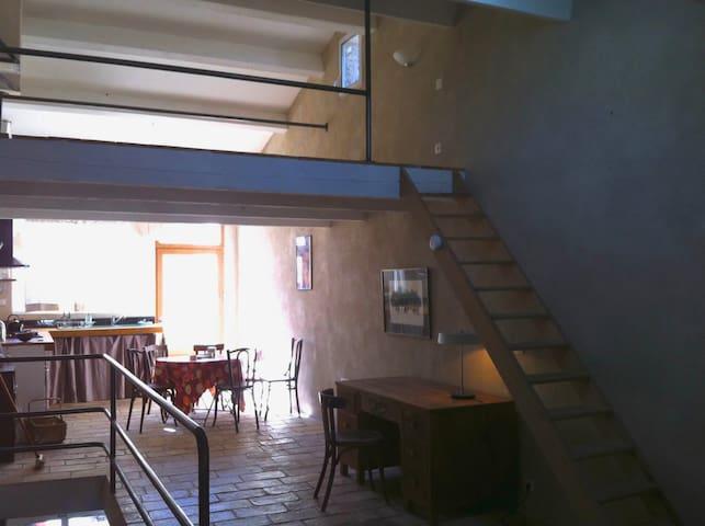 maison atypique, grand séjour avec  terrasse  . - Vic-le-Fesq - House