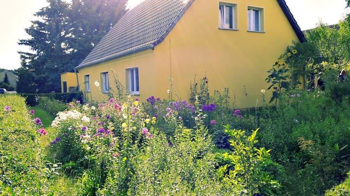ruhige Ferienzimmer im Grünen