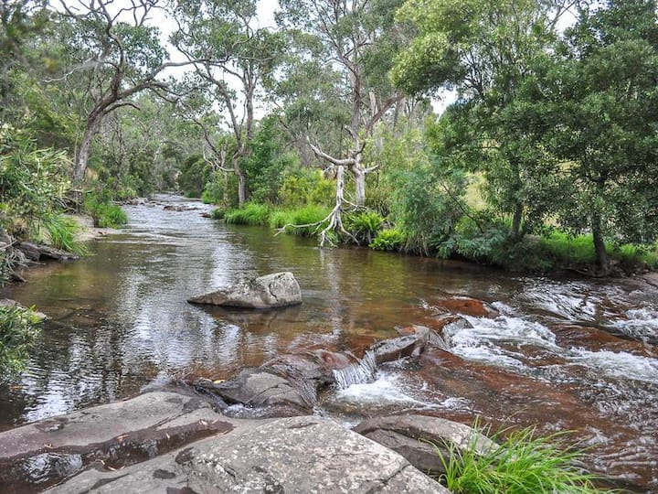 "Mt Buller - Delatite River - Merrijig ""Berneray"""
