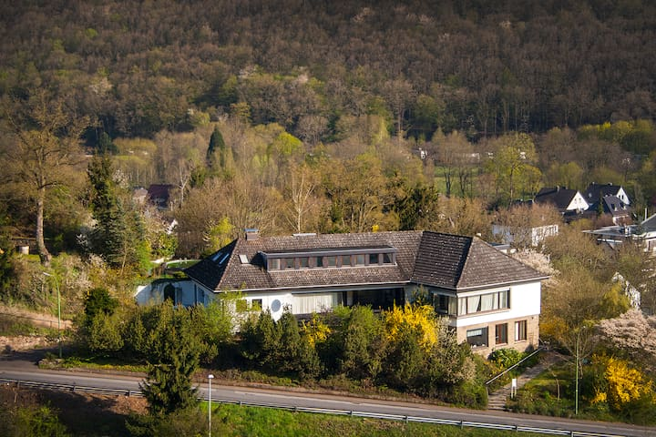 Cozy flat in Nationalpark Eifel, private entrance