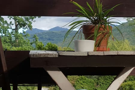 Tiny house en bord de forêt - Arbon - Maan sisään rakennettu talo
