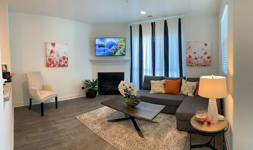 Carlsbad State beach - New beautiful cozy home.