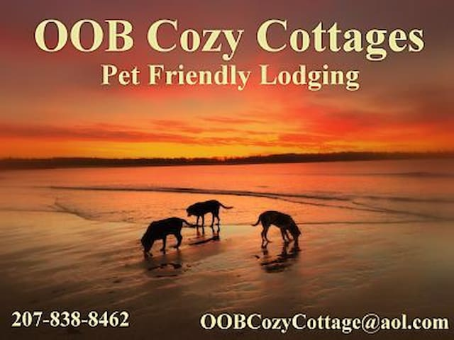 PET FRIENDLY - Cozy Cottages -Beach - Old Orchard Beach - Cabaña