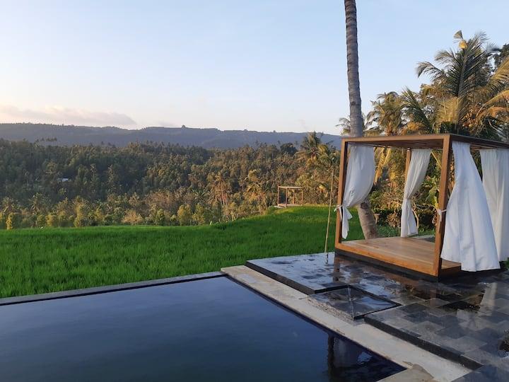 Bali De Pardis Cottage with Insane Rice Field View