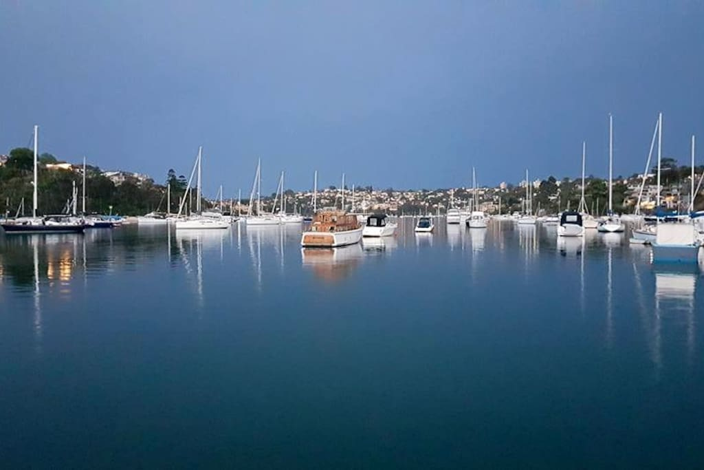 View of Long Bay from Cammeray Marina