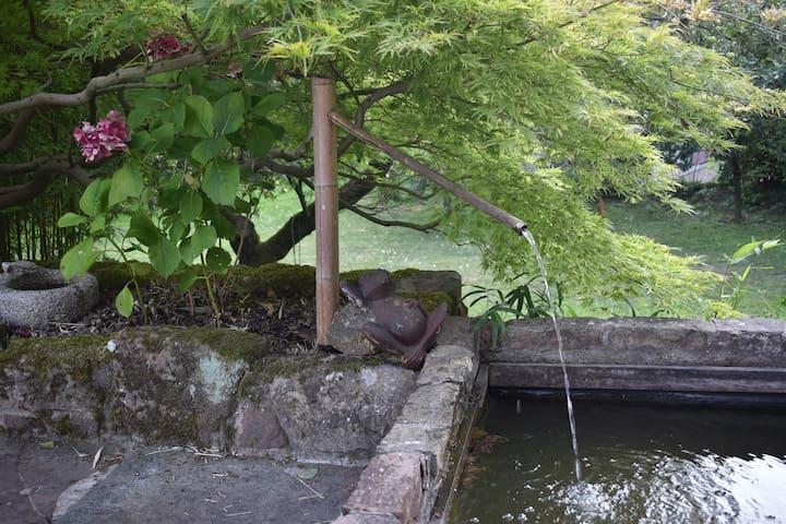 Mon logement Rdch, calme, piscine, près Strasbourg