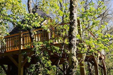 Tree house panoramic view national park - Fiães do Rio - Casa na árvore