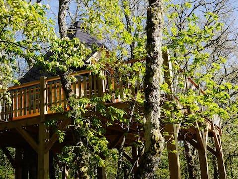 Tree house panoramic view national park