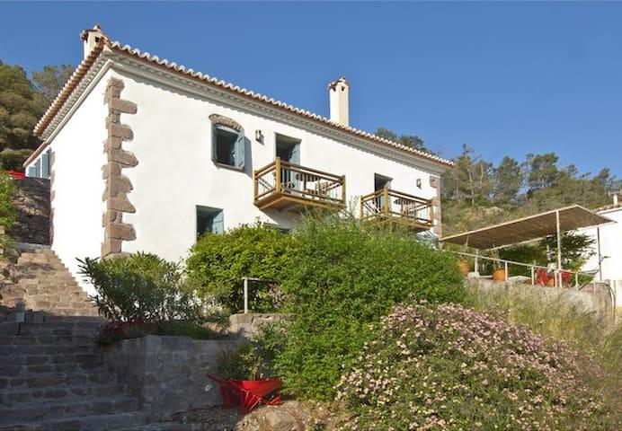 Villa with private pool - Poros - Villa