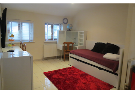 Beautiful 1 Bed Apartment, NWLondon - 文布利 - 公寓