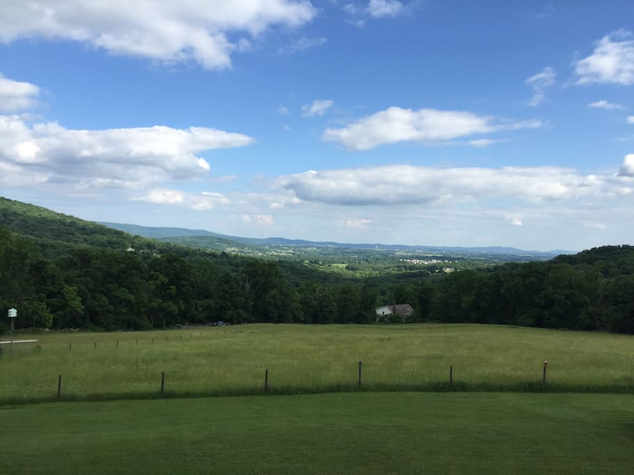 Gorgeous Views