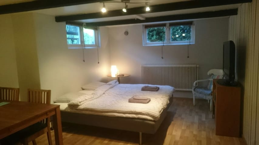 Private room with own entrance and bathroom. - Helsingborg - House