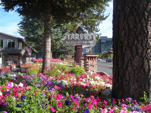 1br suite in Stardust Lounge South Lake Tahoe