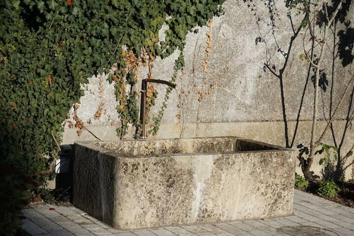 Bassin en pierre dans la cour pavée