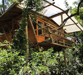 The Treehouse at Casa Motmot - San Pedro La Laguna