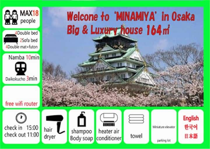 MINAMIYA (Namba, good for family trip)