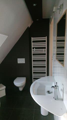 salle d'eau (douche/WC) avec vélux, accès à un 2è wc indépendant