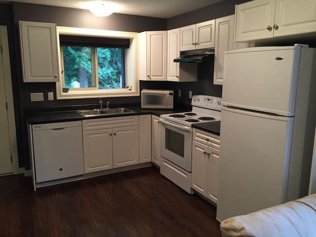 basement suite close to university, and hospital