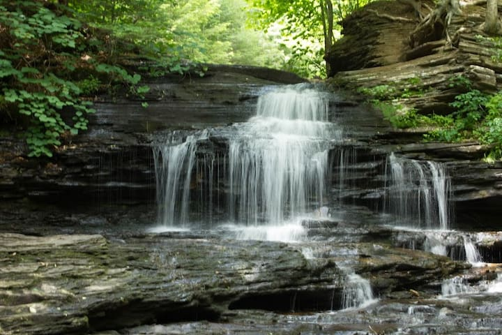 Family Friendy-Ricketts Glen State Park Visitors + - Hunlock Creek - Otros