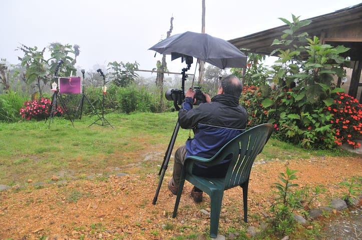 Photo setup for bird photography