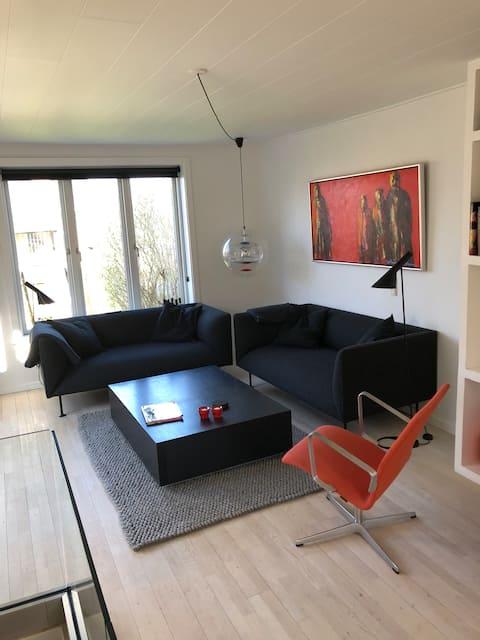 Modern Scandinavian style with sunny terrace!
