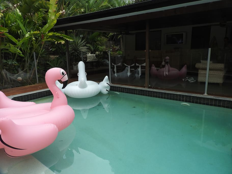 Pool Area which is very secluded and private