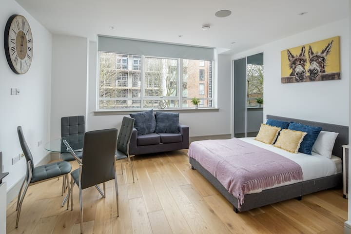 Modern 1 bed flat in Seven Sisters