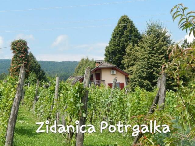 Vineyard Potrgalka - Tanča Gora - House