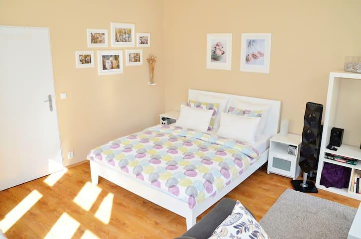 Beautiful sunny apartment in Prague - Praha - Byt