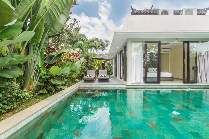 Less 50$ Stunning 1BR Pool Villa in Ubud Town