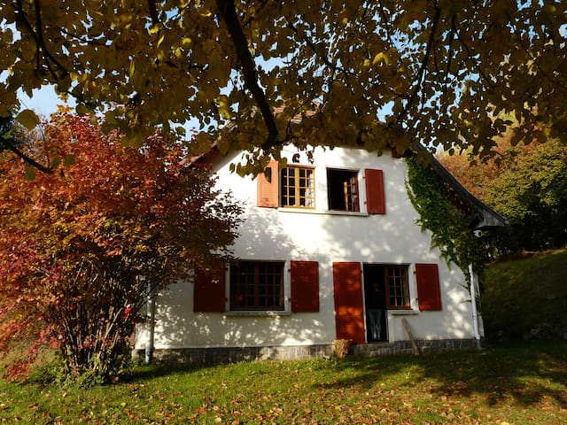 Maison de vacances familiale - Goldbach-Altenbach - House