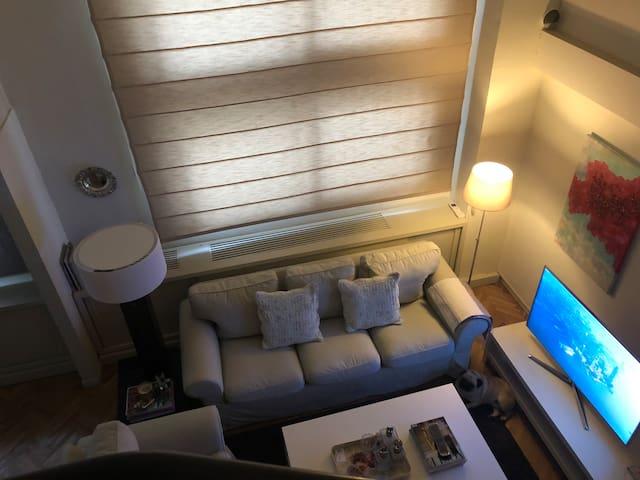 Luxury loft