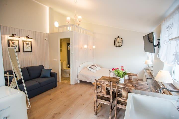 Lapmanni studio apartment with terrace
