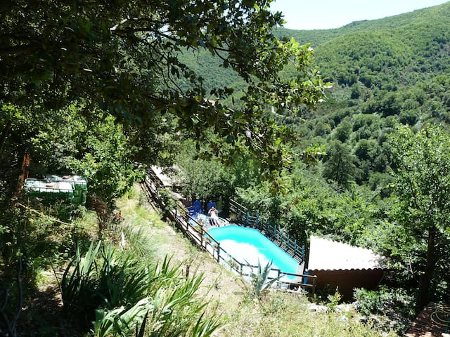 Gîtes Lospelos Le Soureyou FRANCE-Gard-Cévennes - Les Plantiers - Apartamento