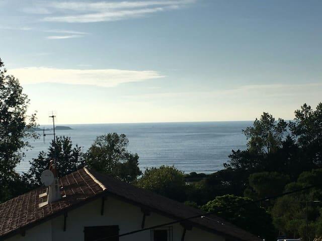 Hendaye plage des 2 jumeaux balcon vue sur mer 5p