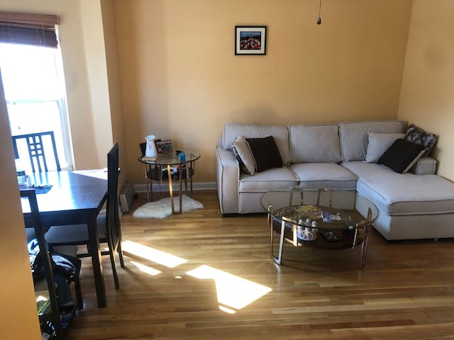 Beautiful 1BR, large deck, steps from Red Line T