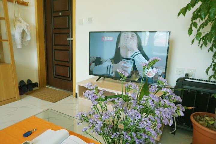 高清网络电视