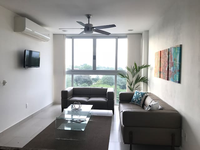 Luxurious apartment Managua